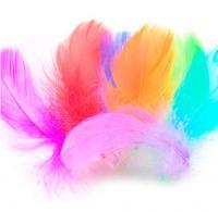 Перья для декора и воздушных шаров