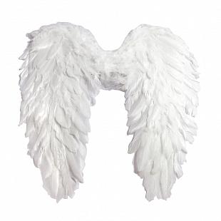 Карнавальные крылья и боа